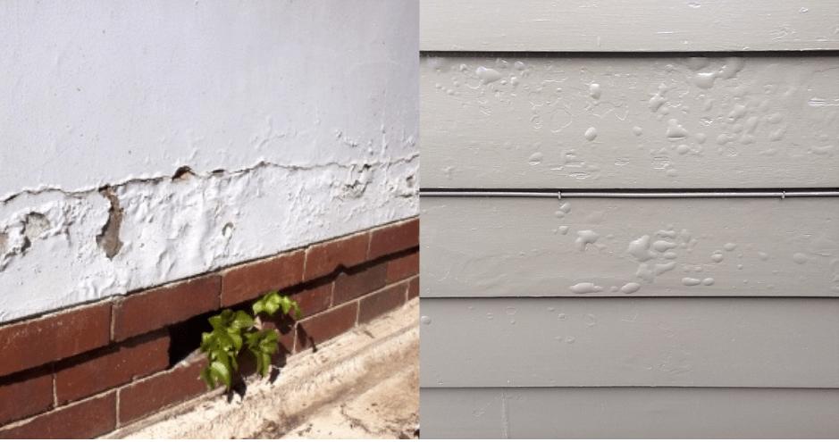 Peeling paint caused by damp
